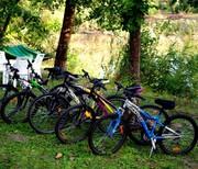 Аренда велосипедов на базе Орельский Двор.